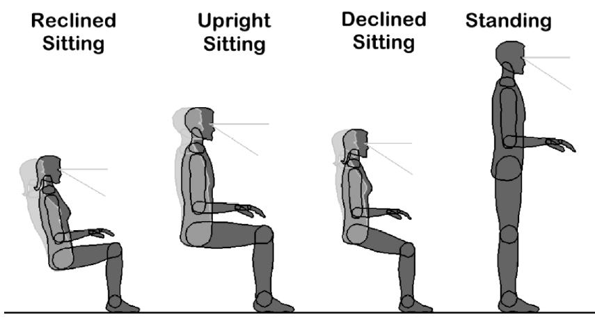 ANSI-HFES Work Postures